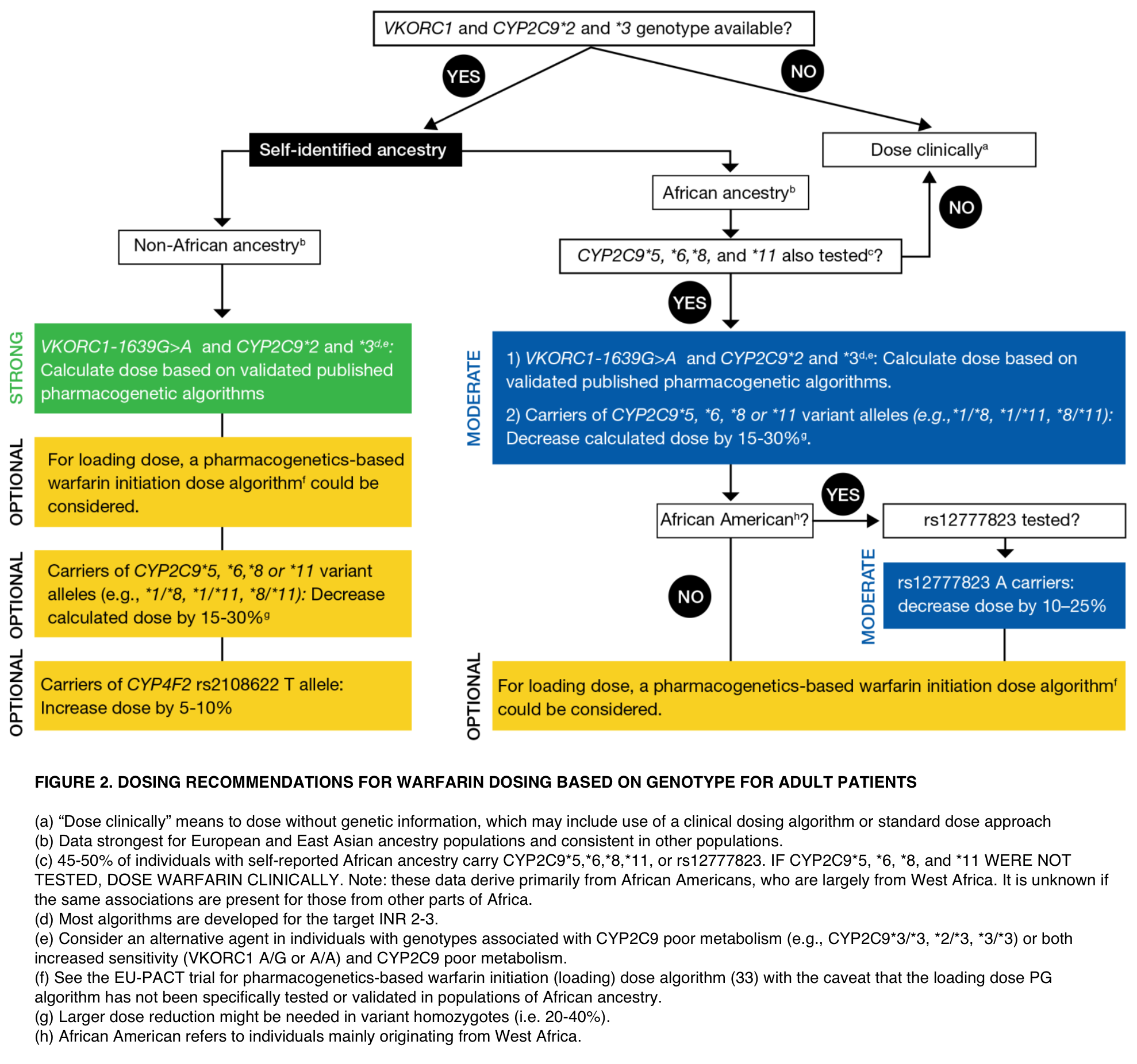 Figure 2 from the CPIC guideline for warfarin